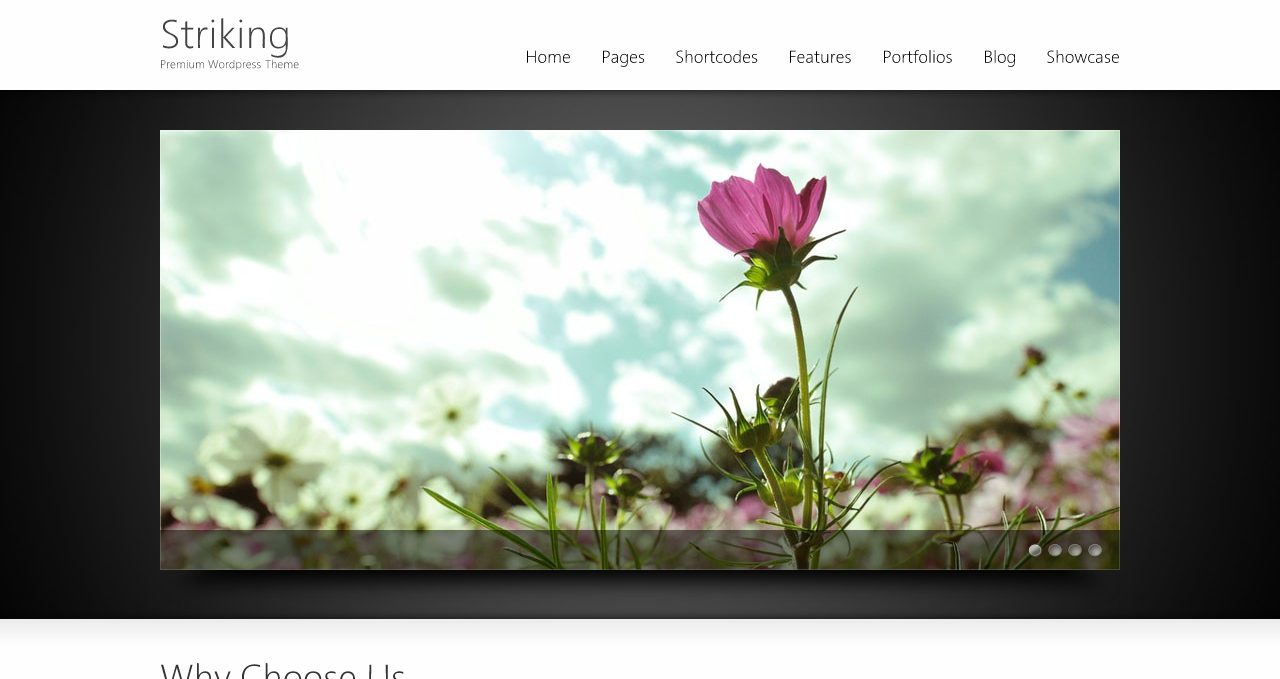 Striking Theme - Best WordPress Themes 2013